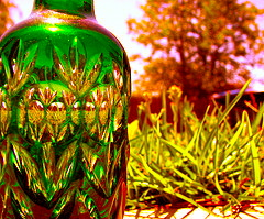 picture of a green bottle with grass and trees behind it.