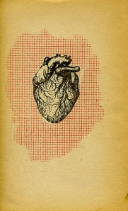 drawing of heart over red grid lines